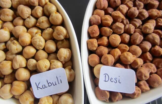 types of chickpeas