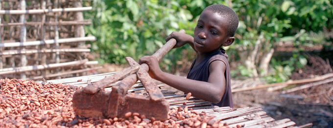 chocolate child labor